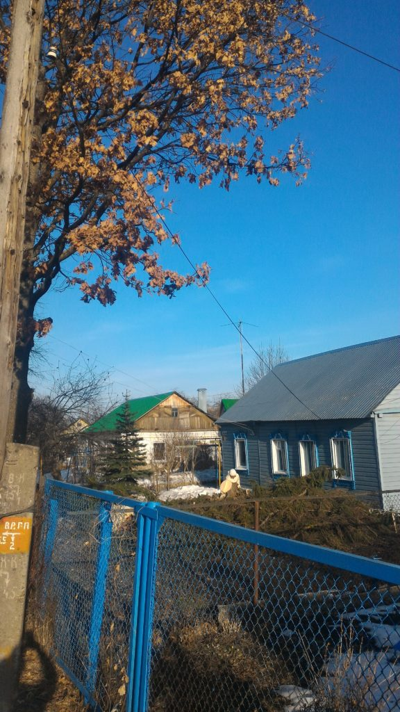 Дерево полностью спилено. Имущество хозяев не пострадало.